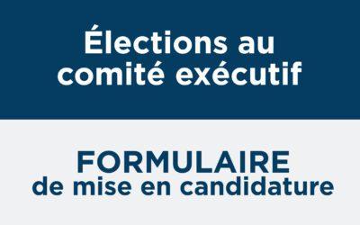 Formulaire de mise en candidature – élection